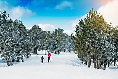 激安スキー板特集!選び方のコツや購入方法を... スキー