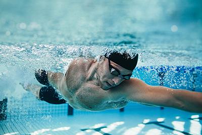 水泳の自由形についての疑問を解決!自由形は... 水泳