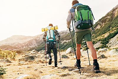 初心者必見!ハイキングを安全に楽しむための...|ハイキング