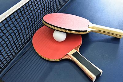ラケットで差がつく!ニッタクの卓球ラケット... 卓球