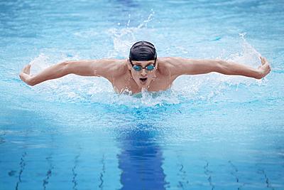 バタフライのコツを紹介!タイミングに合わせ...|水泳