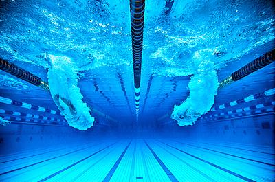 水泳のドルフィンキックのコツを徹底解説!ド...|水泳