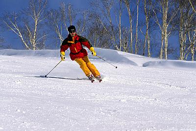 さっそうとゲレンデを滑る!スキーの2種類の...|スキー