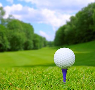 ゴルフティー人気おすすめ9選!プラスチック...|ゴルフ